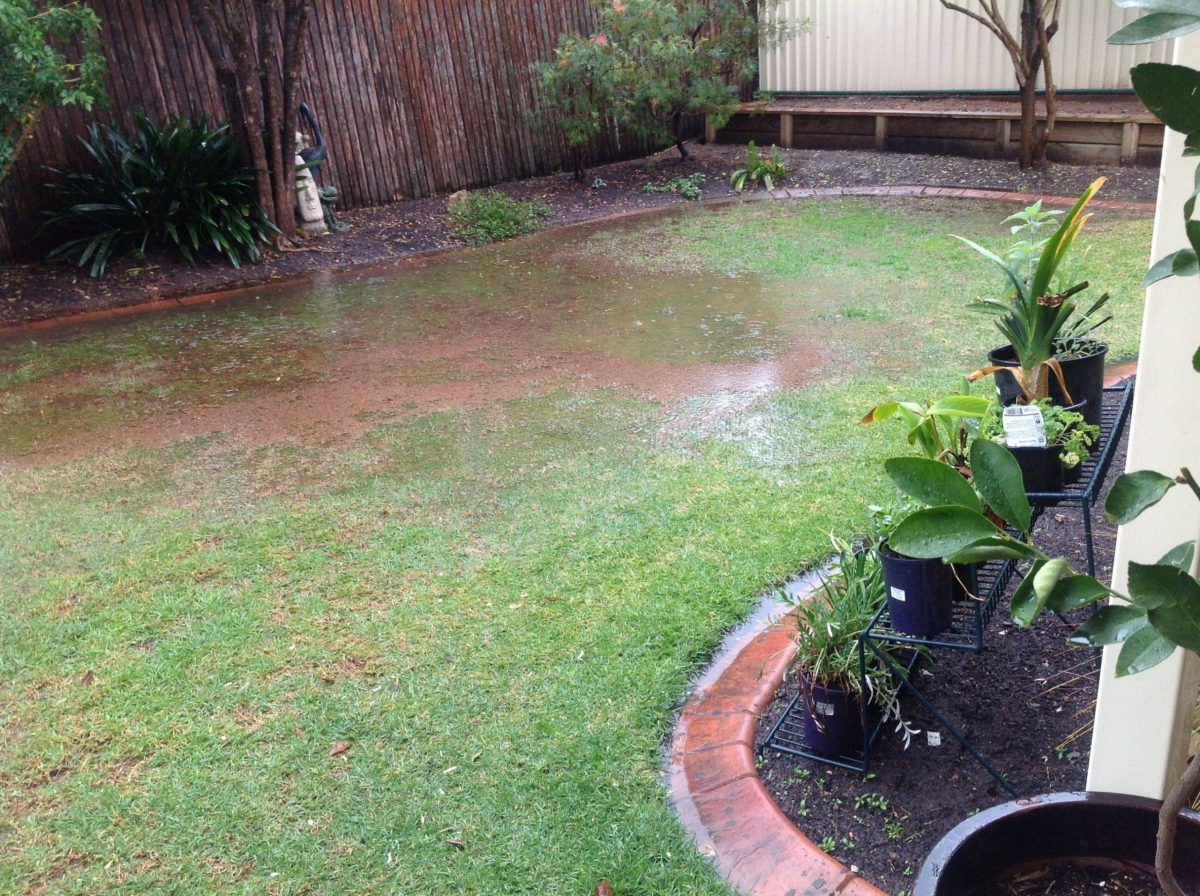Drainage Problems Victoria BC Landscaping