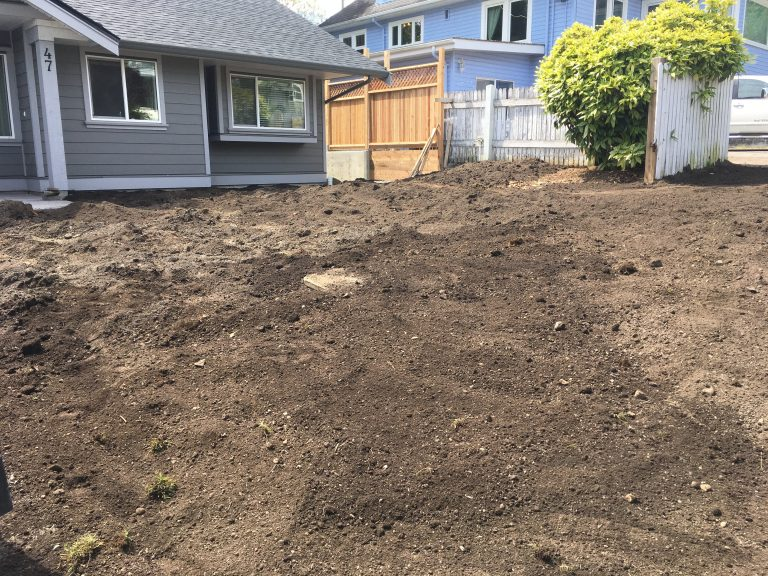 General Landscaping Tips