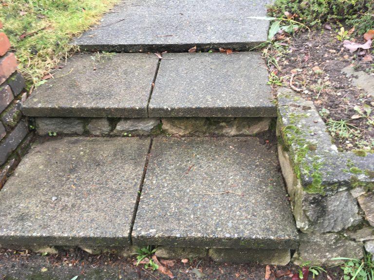 Concrete Sidewalk Before